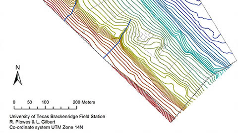 Contour Map of the BFL